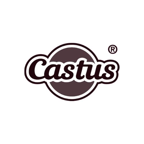 Castus samarbejder med beCORE