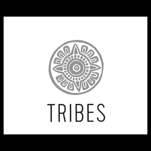 Tribes Havreholm samarbejder med beCORE
